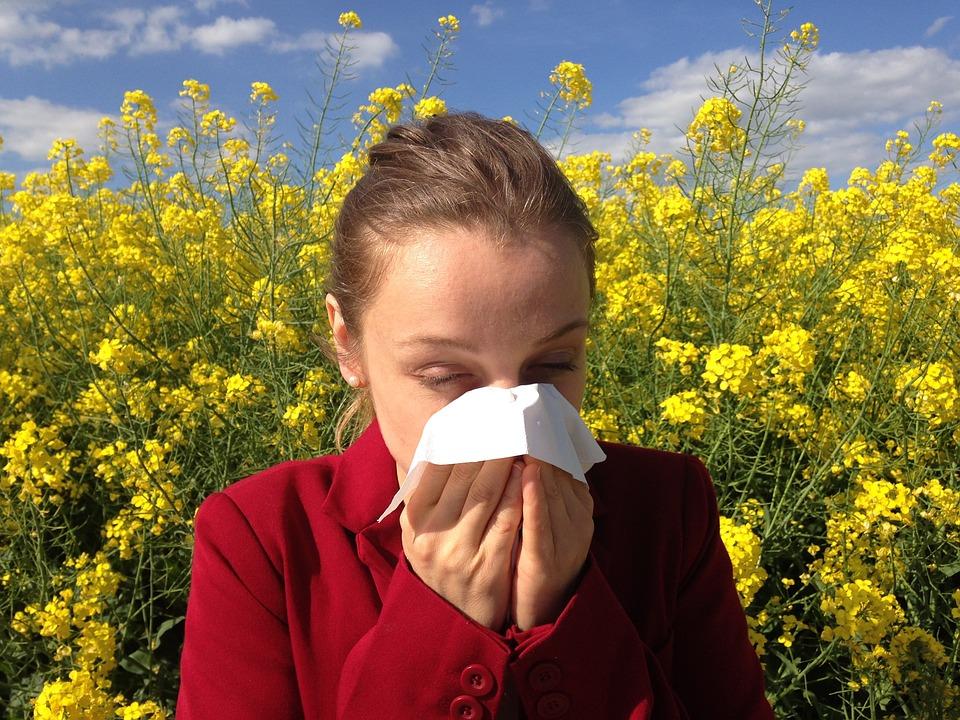 Allergy 1738191 960 720